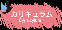 カリキュラム | 東京の美容学校で美容師のプロを目指す|マリールイズ美容専門学校